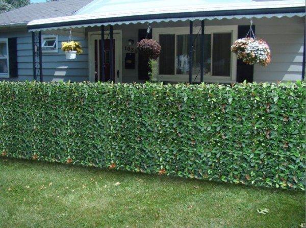Great 10 Diy Garden Fence Ideas 4 Foot Wire Trend Home Design   Plastic Garden  Fencing Ideas ...